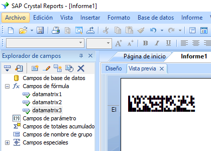 data-matrix crystal reports